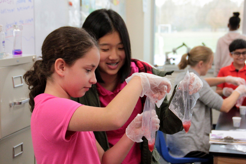 Nysmith School for the Gifted | Northern Virginia Private ...